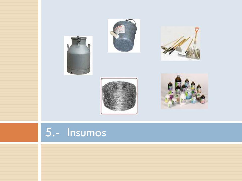 Avalúo de Herramientas Aquí se valoran todas las herramientas y equipos menores de apoyo a la producción y que en Avalúo de Maquinaria no se han tomado en cuenta.