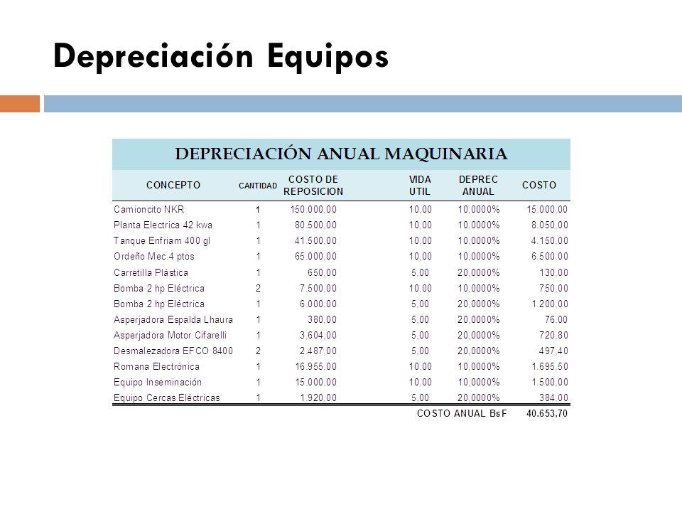 Depreciación Bienechurías