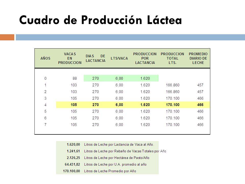 INDICES DEL PROYECTO Para efectos del presente estudio de costo se tomó como premisa las siguientes consideraciones: Producción diaria promedio de 6,00 LITROS.