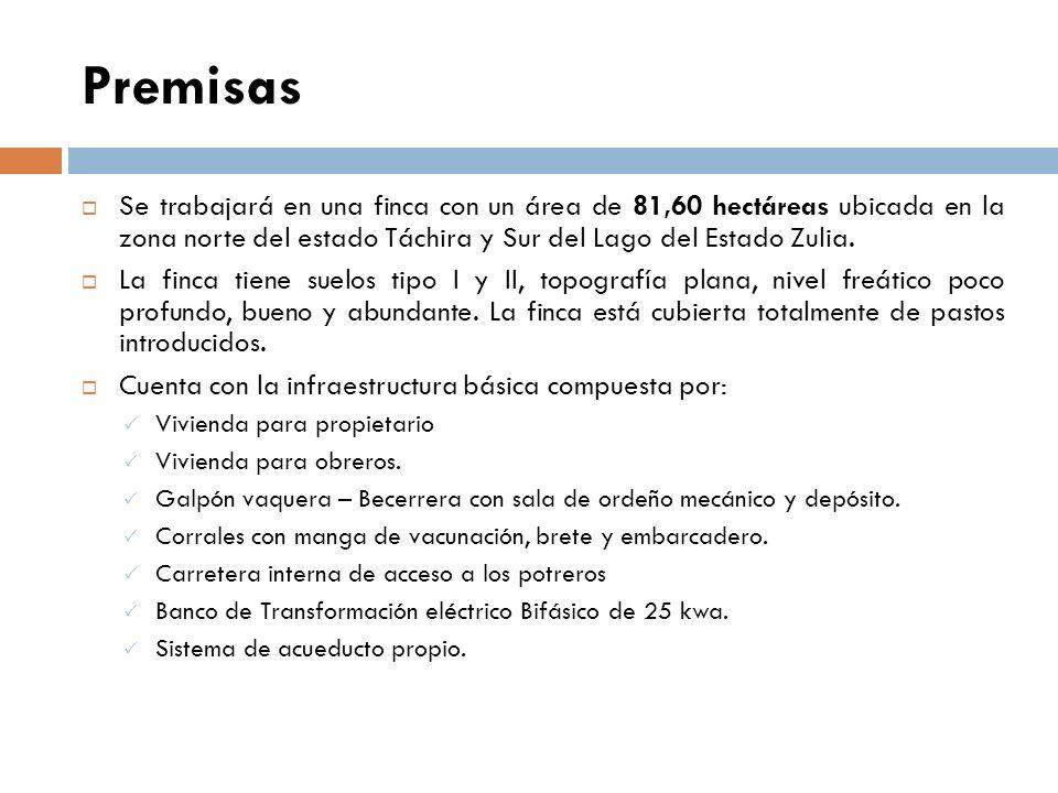 Fórmulas a Utilizar Precio Leche = Renta Bruta Anual Venta Total Anual de Leche Renta Bruta = Costo Recup. Capital + Deprec. Edif. + Gasto Edif. + Man