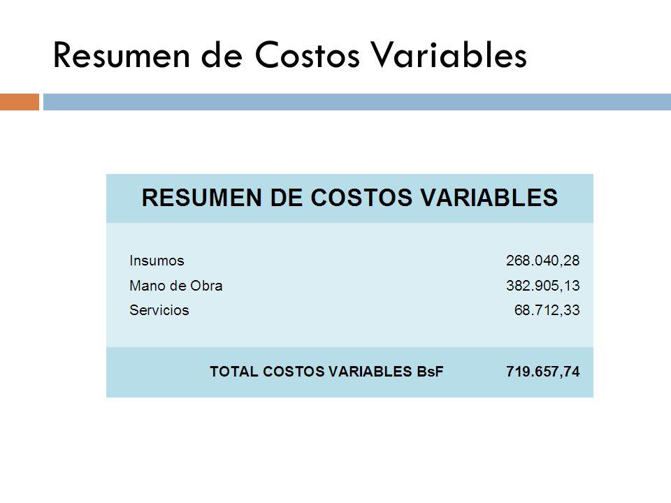 COSTOS VARIABLES RESUMEN DE LOS COSTOS VARIABLES