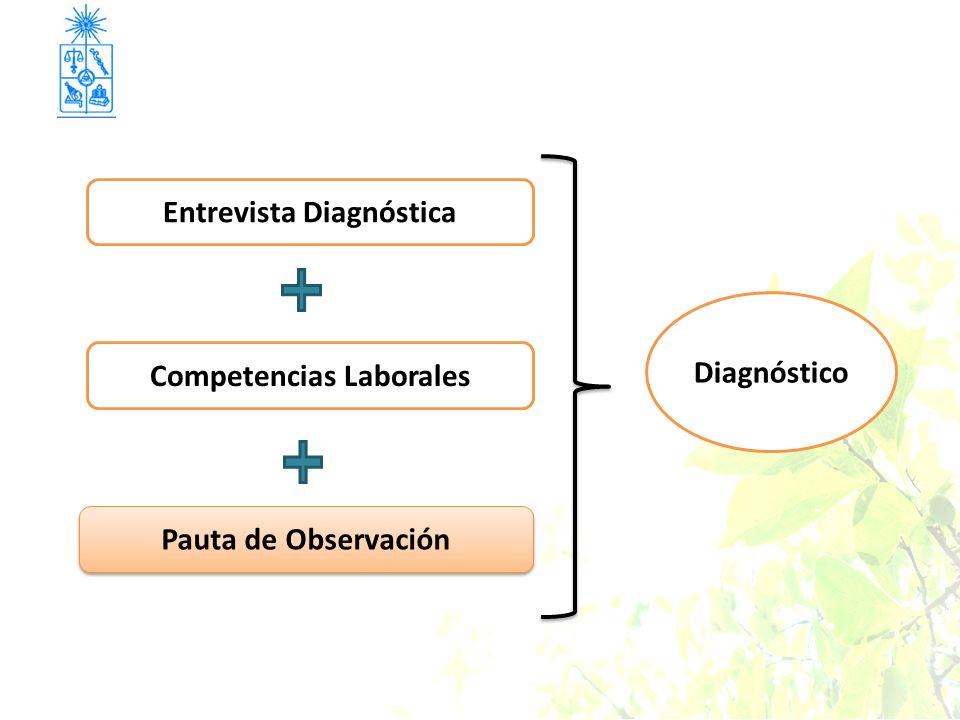 Pauta de Observación Entrevista Diagnóstica Competencias Laborales Diagnóstico
