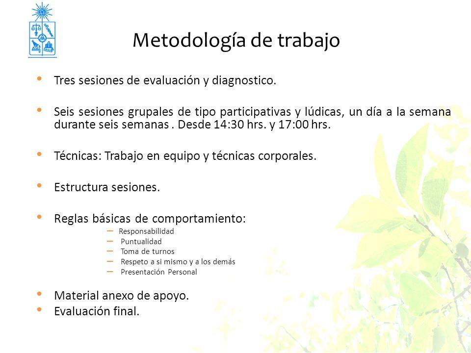 Metodología de trabajo Tres sesiones de evaluación y diagnostico. Seis sesiones grupales de tipo participativas y lúdicas, un día a la semana durante