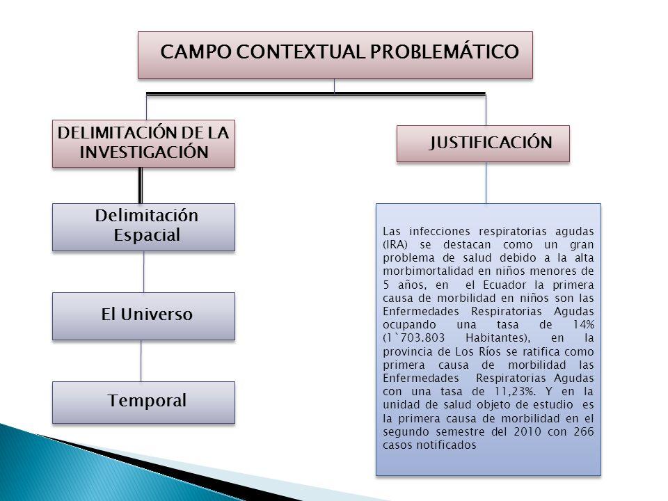 CAMPO CONTEXTUAL PROBLEMÁTICO PROBLEMAS DERIVADOS FORMULACIÓN DEL PROBLEMA ¿Porque es importante identificar factores ambientales que influyen en las
