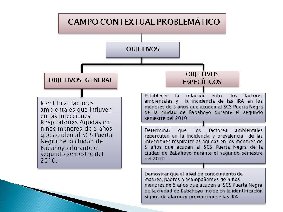 CAMPO CONTEXTUAL PROBLEMÁTICO OBJETIVOS Identificar factores ambientales que influyen en las Infecciones Respiratorias Agudas en niños menores de 5 años que acuden al SCS Puerta Negra de la ciudad de Babahoyo durante el segundo semestre del 2010.