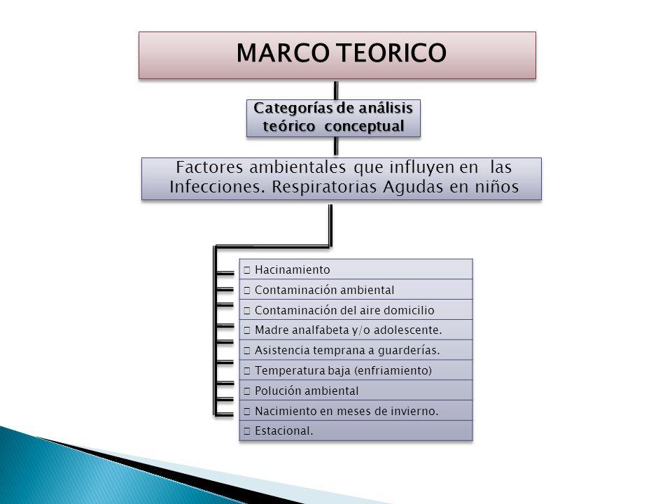 MARCO TEORICO Categorías de análisis teórico conceptual Alternativas teóricas asumidas Las Infección Respiratoria Aguda (IRA) es el conjunto de infecc
