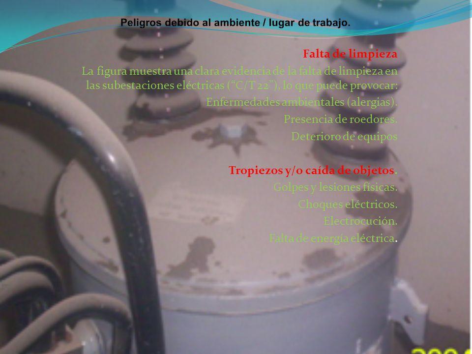 Falta de limpieza La figura muestra una clara evidencia de la falta de limpieza en las subestaciones eléctricas (C/T 22), lo que puede provocar: Enfer