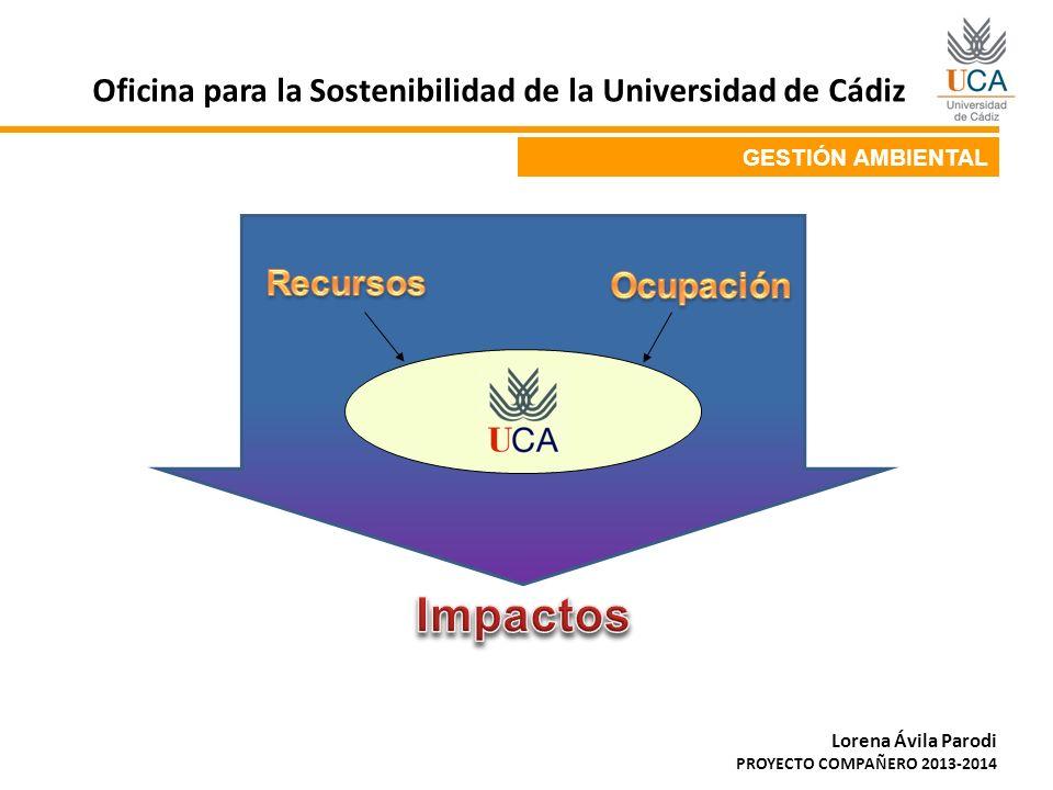GESTIÓN AMBIENTAL Oficina para la Sostenibilidad de la Universidad de Cádiz Lorena Ávila Parodi PROYECTO COMPAÑERO 2013-2014