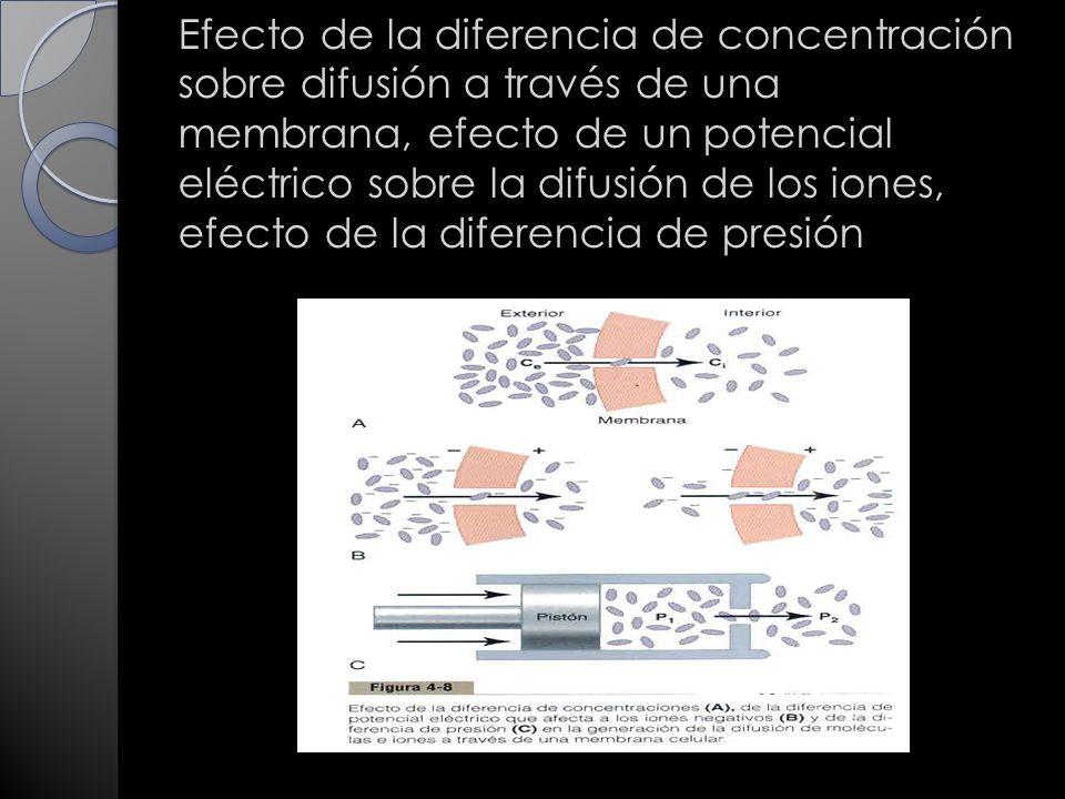 Efecto de la diferencia de concentración sobre difusión a través de una membrana, efecto de un potencial eléctrico sobre la difusión de los iones, efecto de la diferencia de presión
