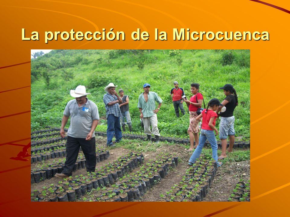 La protección de la Microcuenca