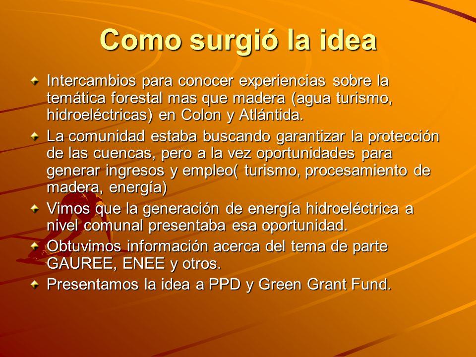 Como surgió la idea Intercambios para conocer experiencias sobre la temática forestal mas que madera (agua turismo, hidroeléctricas) en Colon y Atlánt