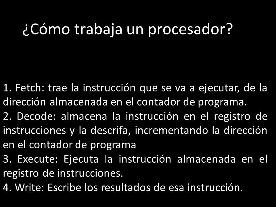 ¿Cómo trabaja un procesador.