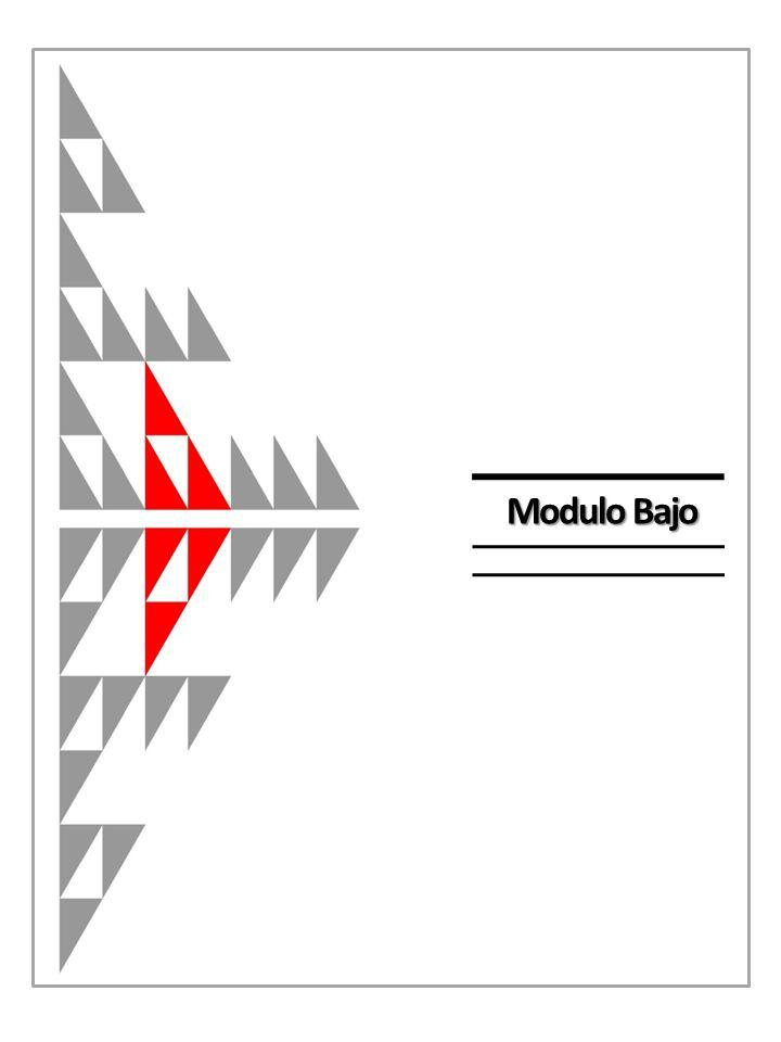 Modulo Bajo