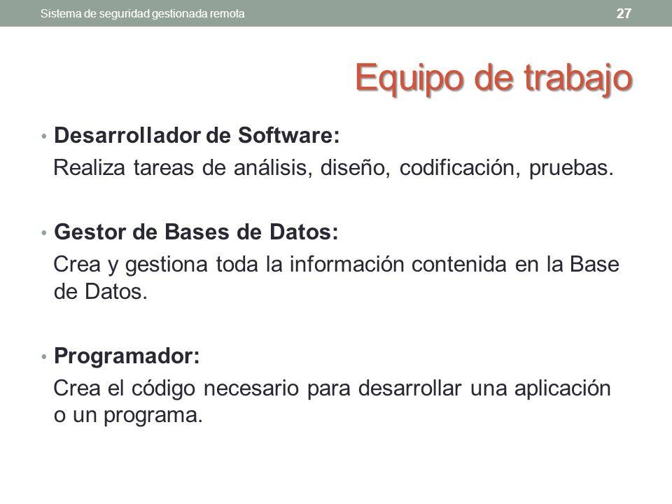 Equipo de trabajo Desarrollador de Software: Realiza tareas de análisis, diseño, codificación, pruebas.