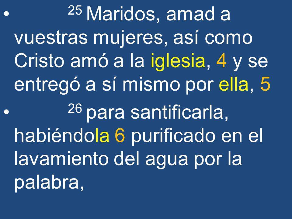 25 Maridos, amad a vuestras mujeres, así como Cristo amó a la iglesia, 4 y se entregó a sí mismo por ella, 5 26 para santificarla, habiéndola 6 purifi