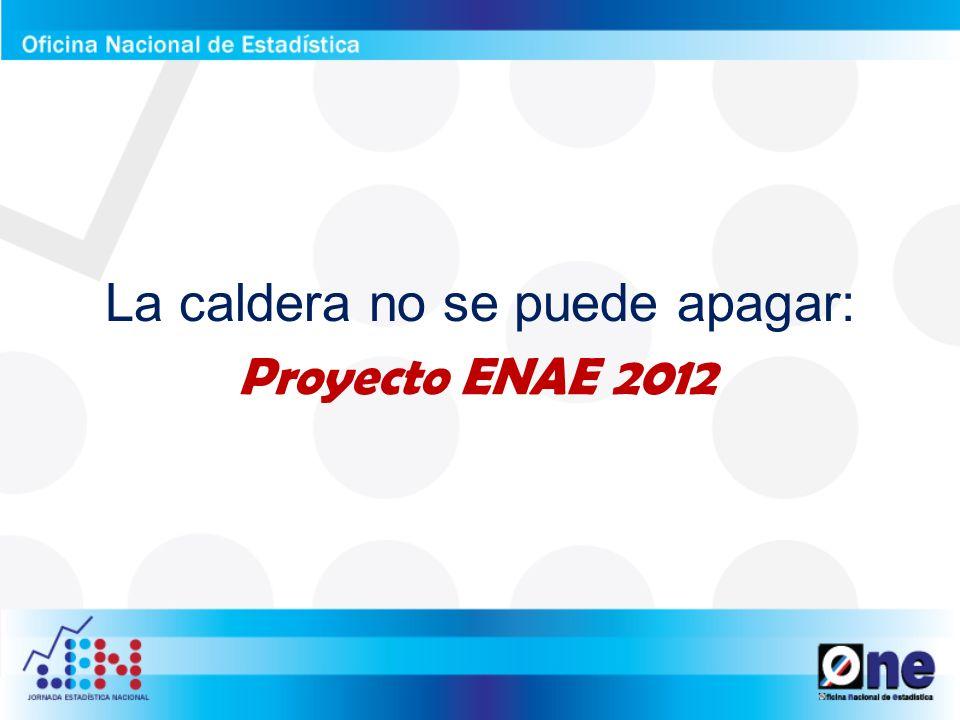 Marco legal: ¿Es obligatorio contestar la ENAE.¿Es confidencial la información.