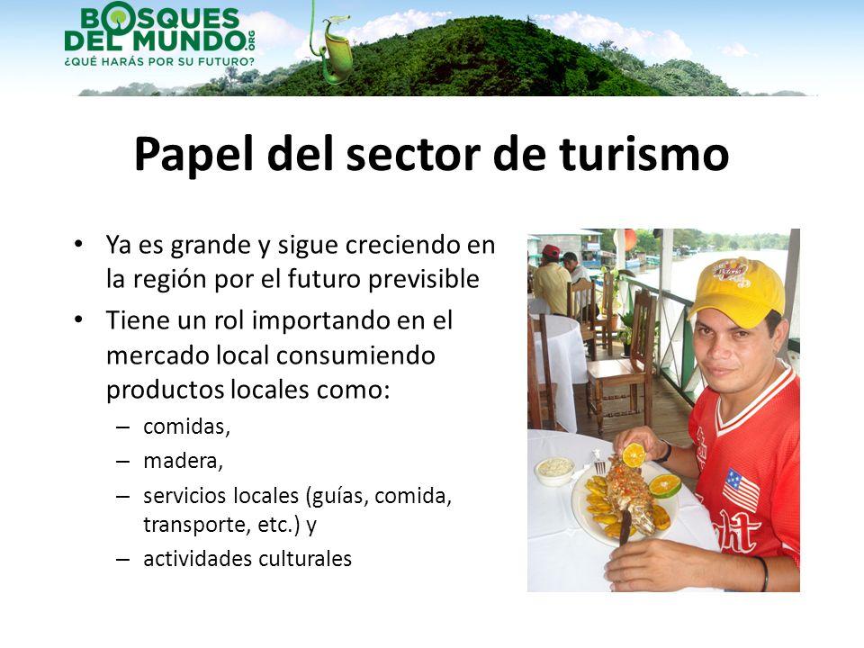 Papel del sector de turismo Ya es grande y sigue creciendo en la región por el futuro previsible Tiene un rol importando en el mercado local consumien