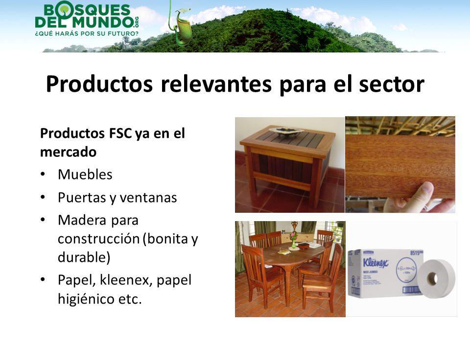 Productos relevantes para el sector Productos FSC ya en el mercado Muebles Puertas y ventanas Madera para construcción (bonita y durable) Papel, kleen