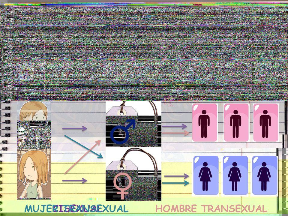 Hay personas que nacen siendo TRANSEXUALES Identidad SexualIdentidad de géneroSexo Biológico MachoHembra¿Cómo me reconozco?¿Con quién me identifico? C