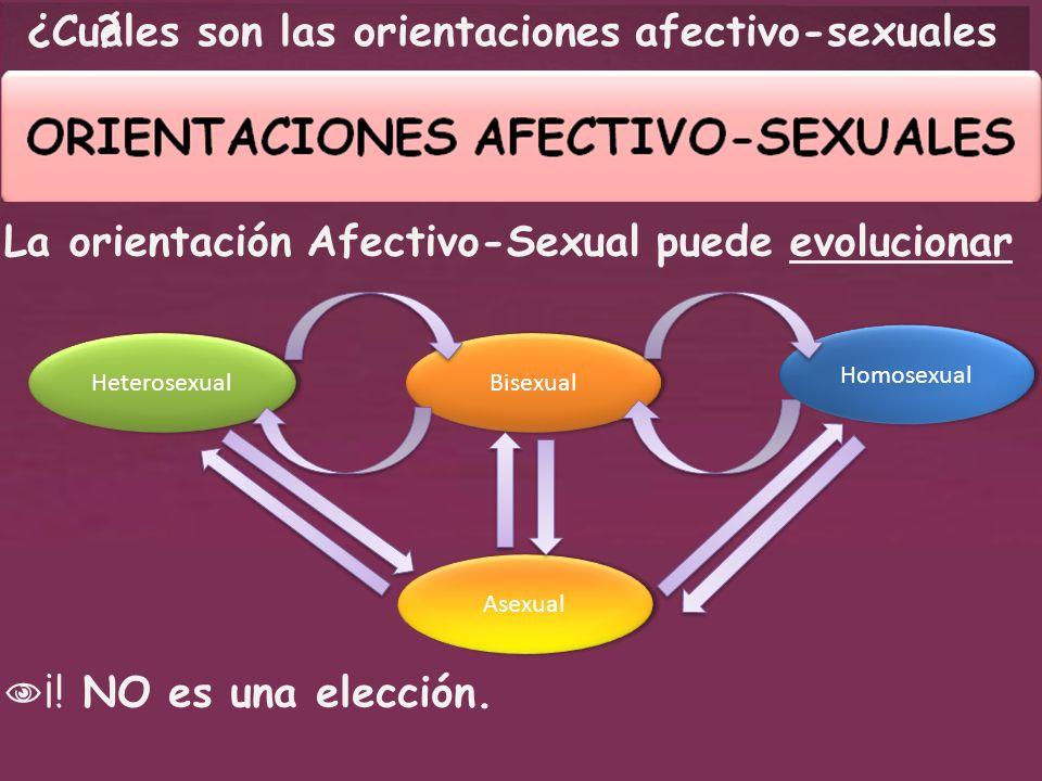 Cuáles son las orientaciones afectivo-sexuales ¿? La orientación Afectivo-Sexual puede evolucionar Bisexual Heterosexual Asexual Homosexual ¡! NO es u