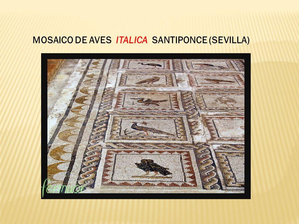 MOSAICO DE AVES ITALICA SANTIPONCE (SEVILLA)