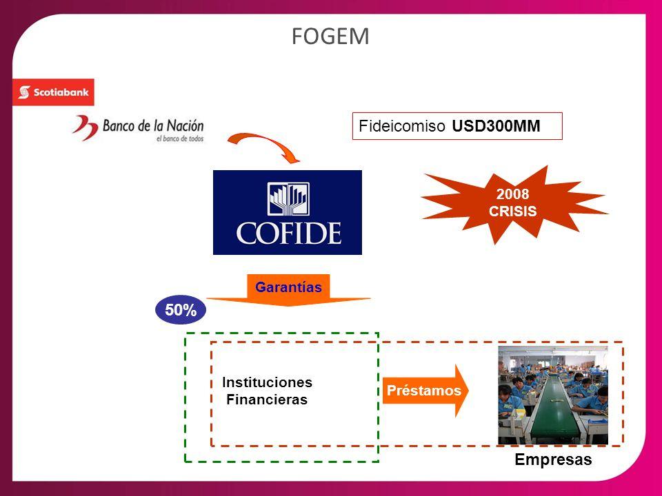 FOGEM Fideicomiso USD300MM Instituciones Financieras Empresas Garantías Préstamos 50% 2008 CRISIS