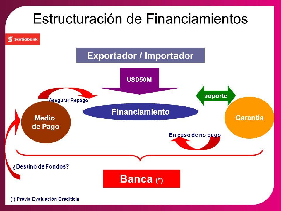 Estructuración de Financiamientos Financiamiento Garantía Medio de Pago soporte Exportador / Importador Banca (*) Asegurar Repago En caso de no pago U