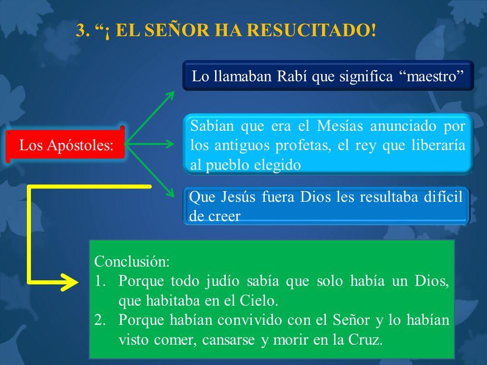 3. ¡ EL SEÑOR HA RESUCITADO! Los Apóstoles: Lo llamaban Rabí que significa maestro Sabían que era el Mesías anunciado por los antiguos profetas, el re