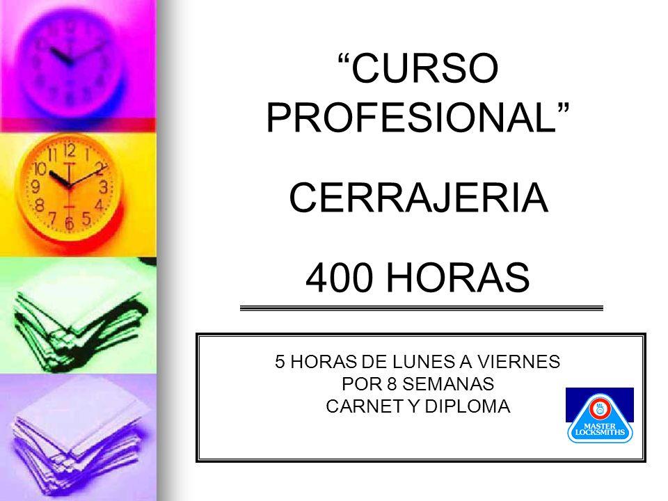 CURSO PROFESIONAL CERRAJERIA 400 HORAS 5 HORAS DE LUNES A VIERNES POR 8 SEMANAS CARNET Y DIPLOMA