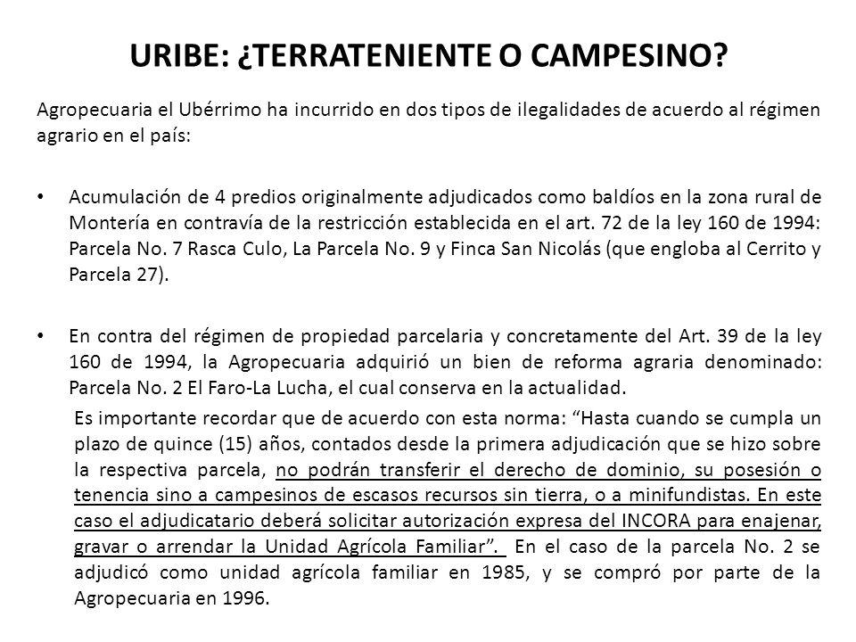 URIBE: ¿TERRATENIENTE O CAMPESINO? Agropecuaria el Ubérrimo ha incurrido en dos tipos de ilegalidades de acuerdo al régimen agrario en el país: Acumul