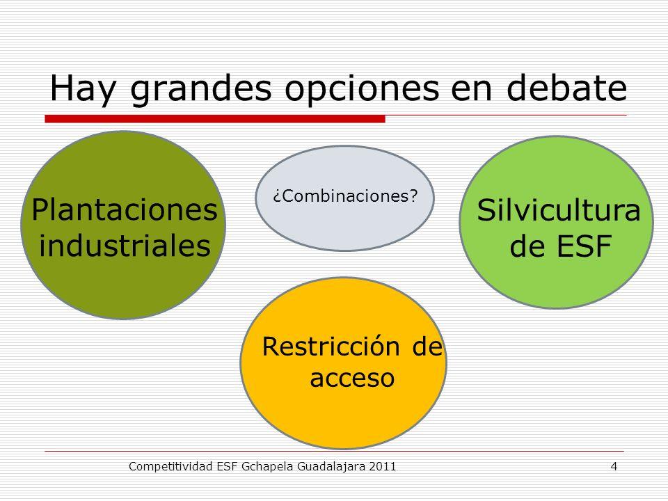 Hay grandes opciones en debate Competitividad ESF Gchapela Guadalajara 2011 Silvicultura de ESF Plantaciones industriales Restricción de acceso ¿Combi