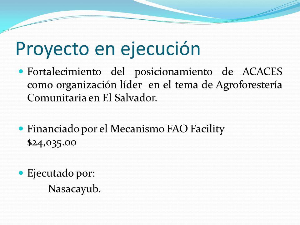 Proyecto en ejecución Fortalecimiento del posicionamiento de ACACES como organización líder en el tema de Agroforestería Comunitaria en El Salvador. F