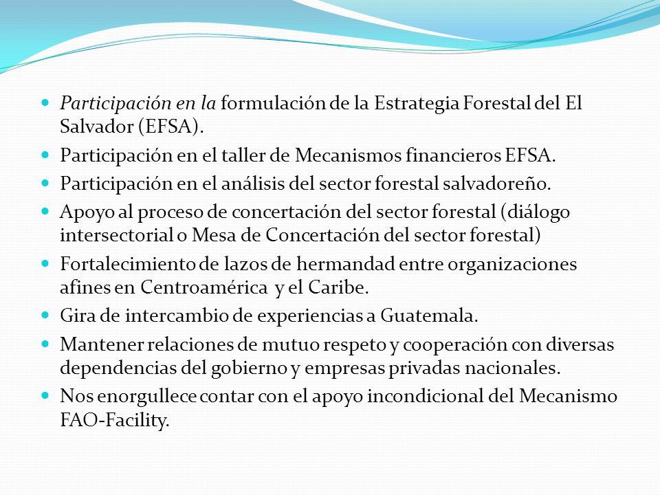 Participación en la formulación de la Estrategia Forestal del El Salvador (EFSA). Participación en el taller de Mecanismos financieros EFSA. Participa