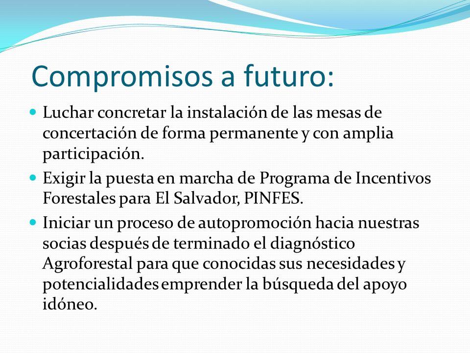 Compromisos a futuro: Luchar concretar la instalación de las mesas de concertación de forma permanente y con amplia participación. Exigir la puesta en
