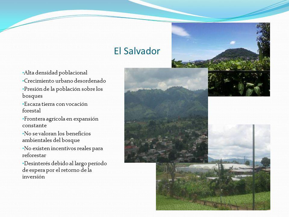 El Salvador Alta densidad poblacional Crecimiento urbano desordenado Presión de la población sobre los bosques Escaza tierra con vocación forestal Fro
