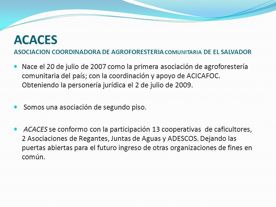 ACACES ASOCIACION COORDINADORA DE AGROFORESTERIA COMUNITARIA DE EL SALVADOR Nace el 20 de julio de 2007 como la primera asociación de agroforestería c