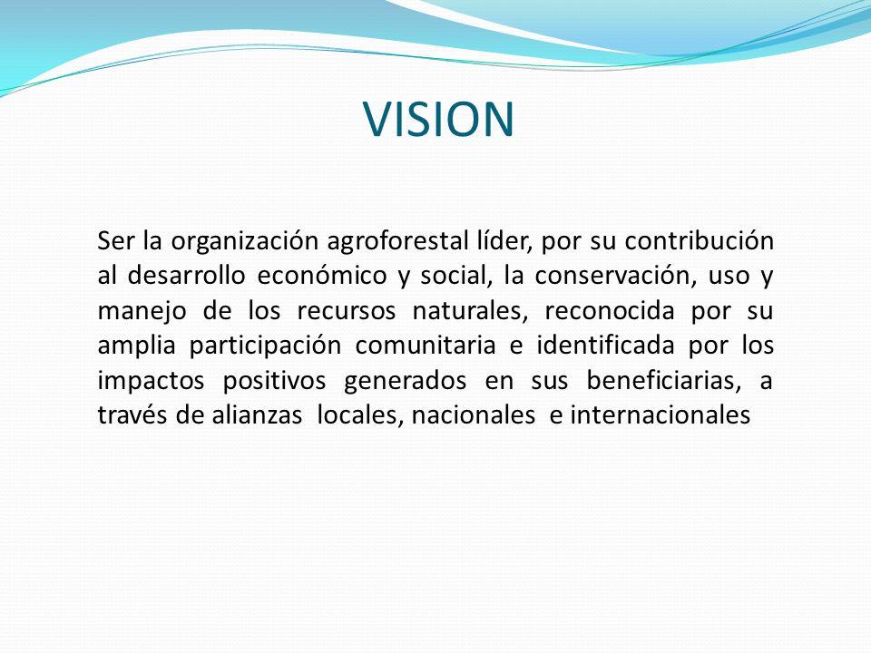 VISION Ser la organización agroforestal líder, por su contribución al desarrollo económico y social, la conservación, uso y manejo de los recursos nat