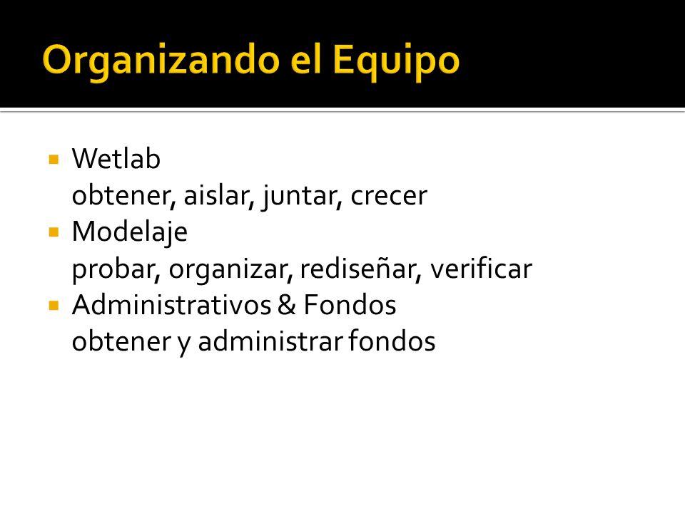 Wetlab obtener, aislar, juntar, crecer Modelaje probar, organizar, rediseñar, verificar Administrativos & Fondos obtener y administrar fondos