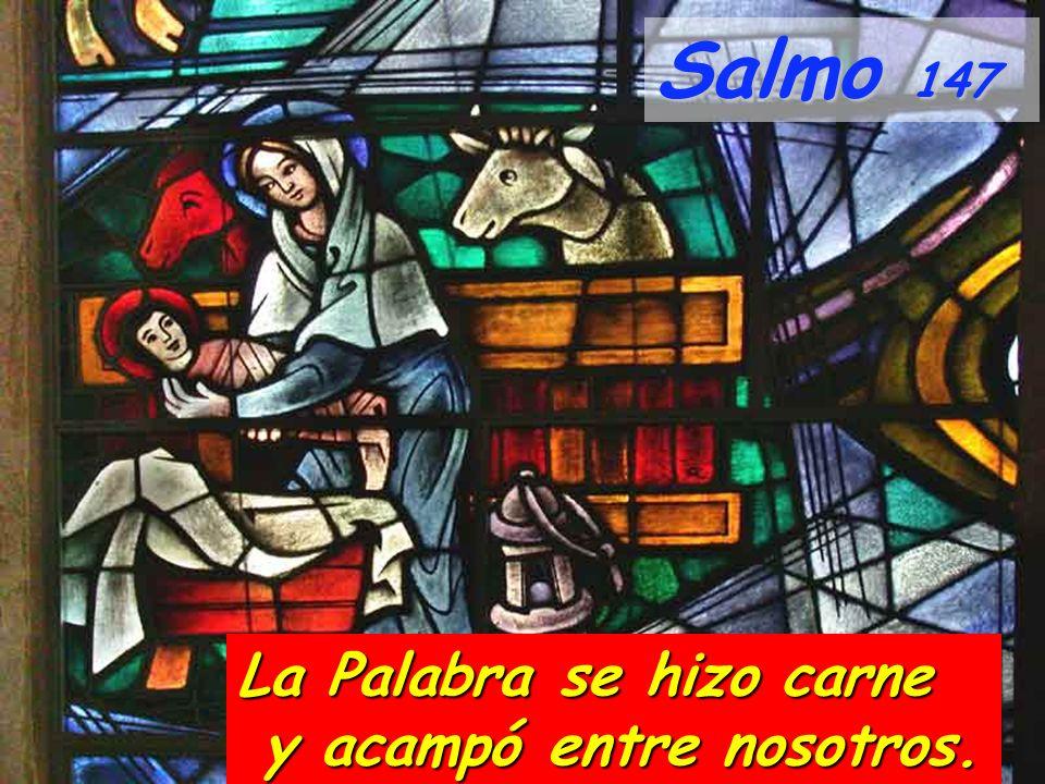 Salmo 147 La Palabra se hizo carne y acampó entre nosotros. y acampó entre nosotros.