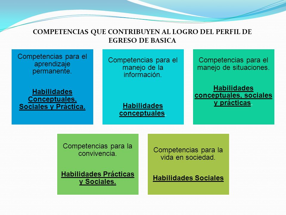 Competencias para el aprendizaje permanente. Habilidades Conceptuales, Sociales y Práctica. Competencias para el manejo de la información. Habilidades