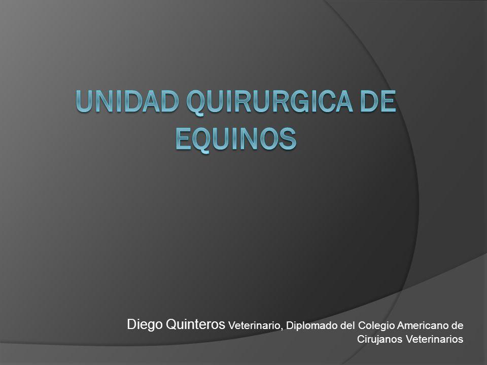 Diego Quinteros Veterinario, Diplomado del Colegio Americano de Cirujanos Veterinarios