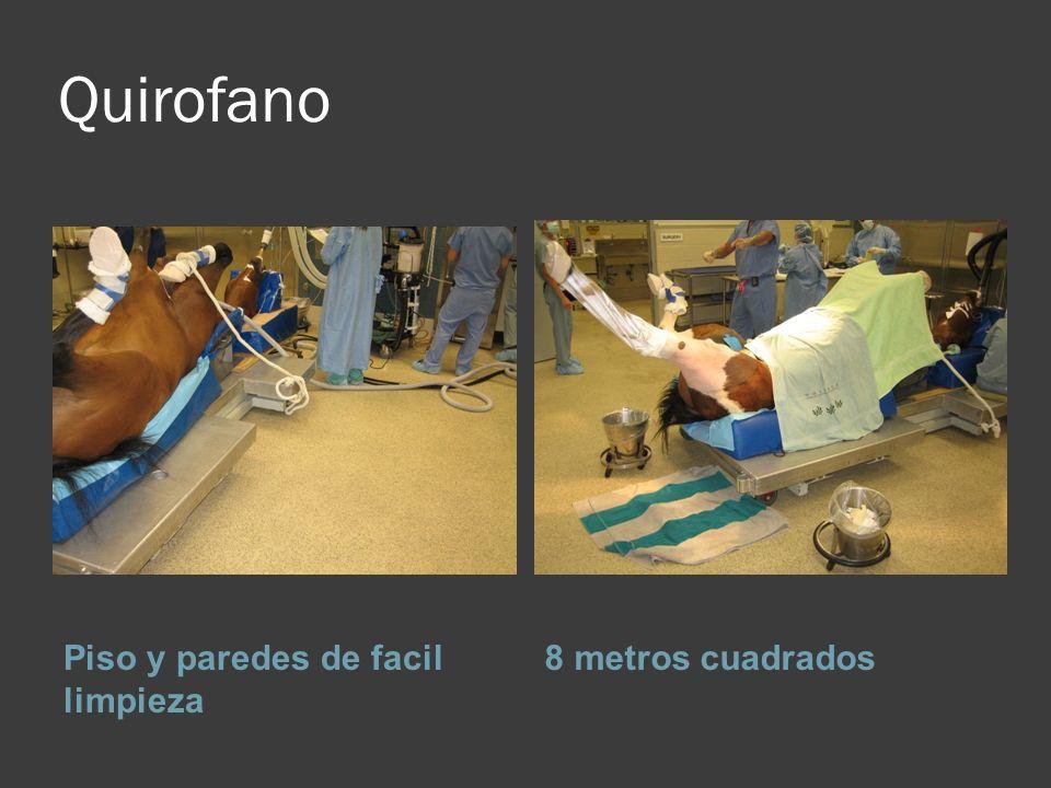 Quirofano Piso y paredes de facil limpieza 8 metros cuadrados