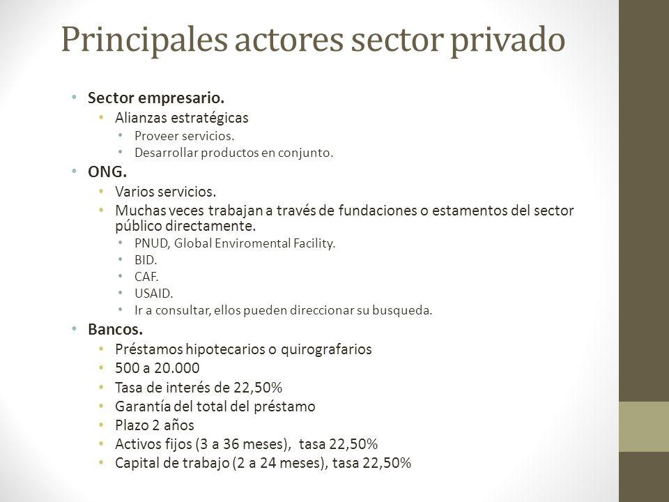Principales actores sector privado Sector empresario. Alianzas estratégicas Proveer servicios. Desarrollar productos en conjunto. ONG. Varios servicio