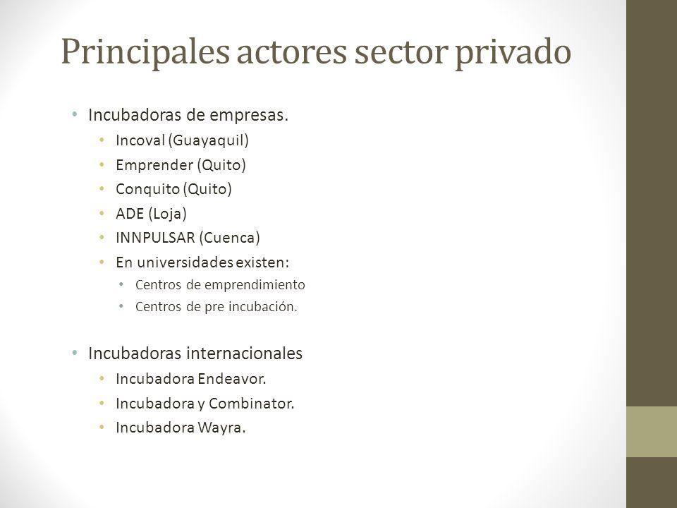 Principales actores sector privado Incubadoras de empresas. Incoval (Guayaquil) Emprender (Quito) Conquito (Quito) ADE (Loja) INNPULSAR (Cuenca) En un