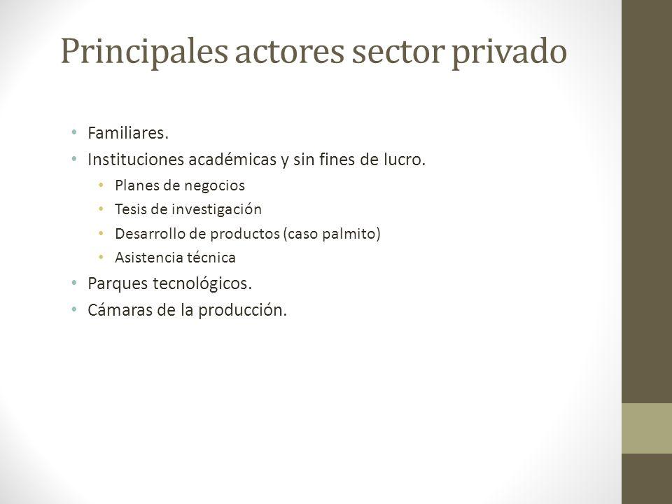 Principales actores sector privado Familiares. Instituciones académicas y sin fines de lucro. Planes de negocios Tesis de investigación Desarrollo de