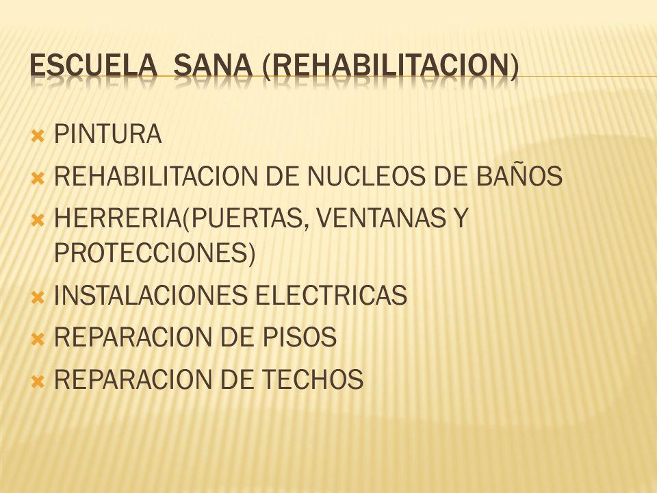 PINTURA REHABILITACION DE NUCLEOS DE BAÑOS HERRERIA(PUERTAS, VENTANAS Y PROTECCIONES) INSTALACIONES ELECTRICAS REPARACION DE PISOS REPARACION DE TECHOS