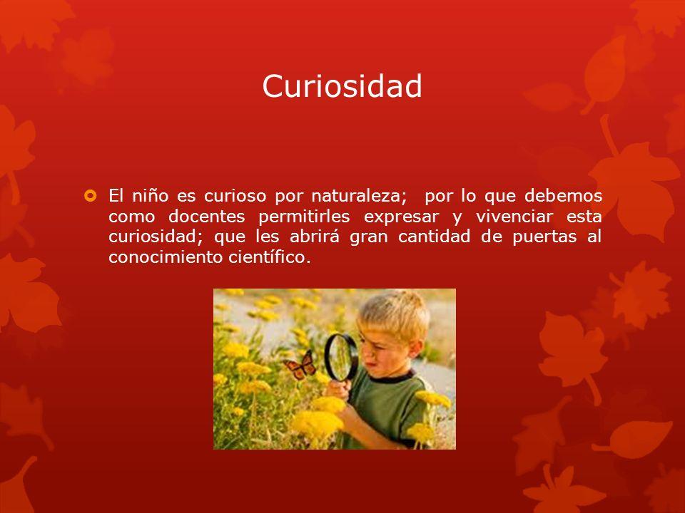 Curiosidad El niño es curioso por naturaleza; por lo que debemos como docentes permitirles expresar y vivenciar esta curiosidad; que les abrirá gran c
