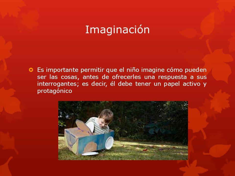Imaginación Es importante permitir que el niño imagine cómo pueden ser las cosas, antes de ofrecerles una respuesta a sus interrogantes; es decir, él