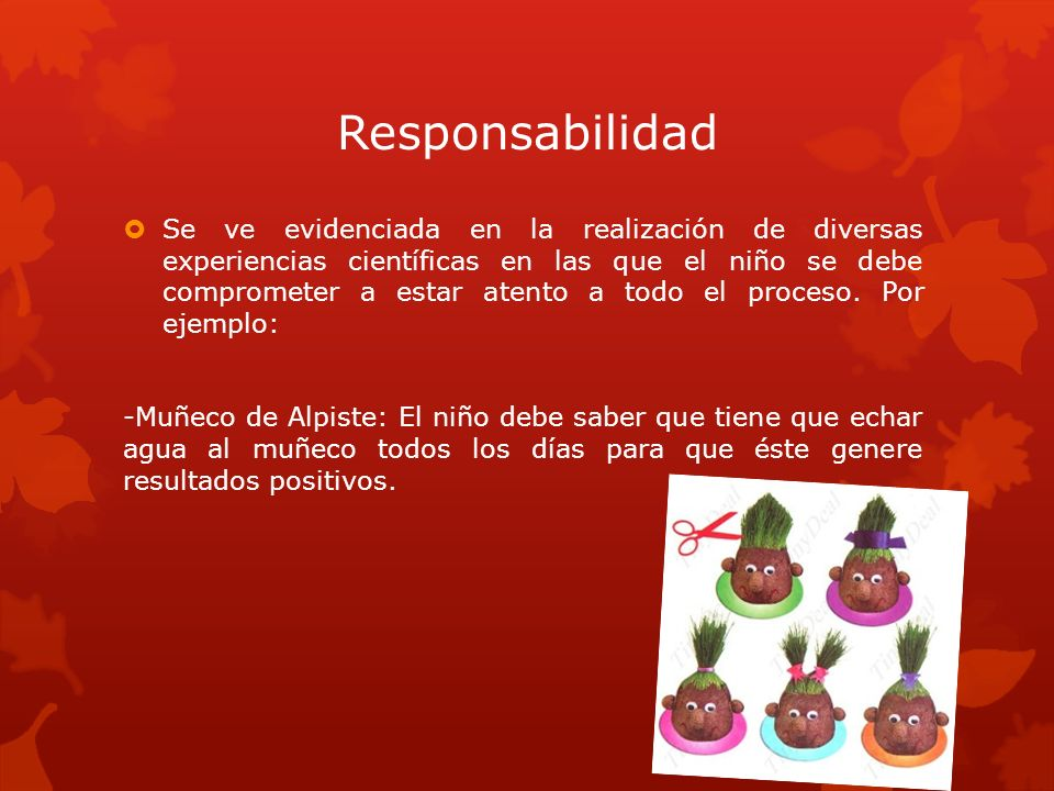 Responsabilidad Se ve evidenciada en la realización de diversas experiencias científicas en las que el niño se debe comprometer a estar atento a todo