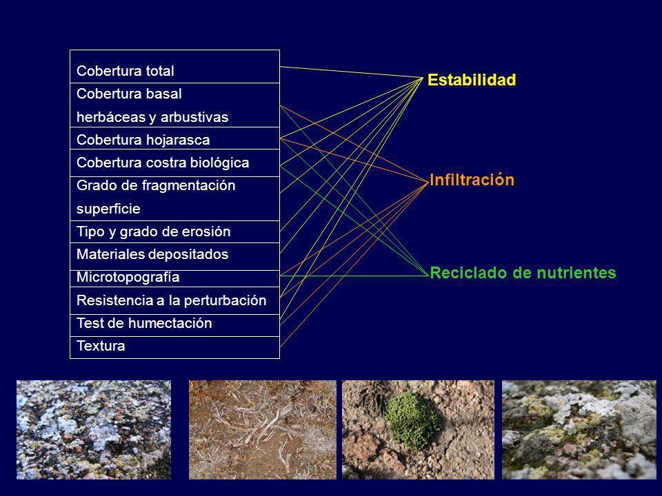 Cobertura total Cobertura basal herbáceas y arbustivas Cobertura hojarasca Cobertura costra biológica Grado de fragmentación superficie Tipo y grado de erosión Materiales depositados Microtopografía Resistencia a la perturbación Test de humectación Textura Estabilidad Infiltración Reciclado de nutrientes